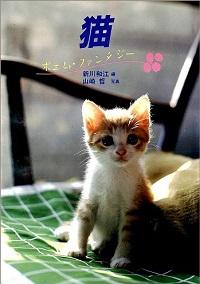 猫 ポエム・ファンタジー
