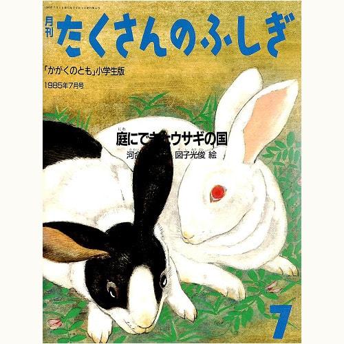 庭にできたウサギの国