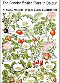 The Concise British Flora in Colour